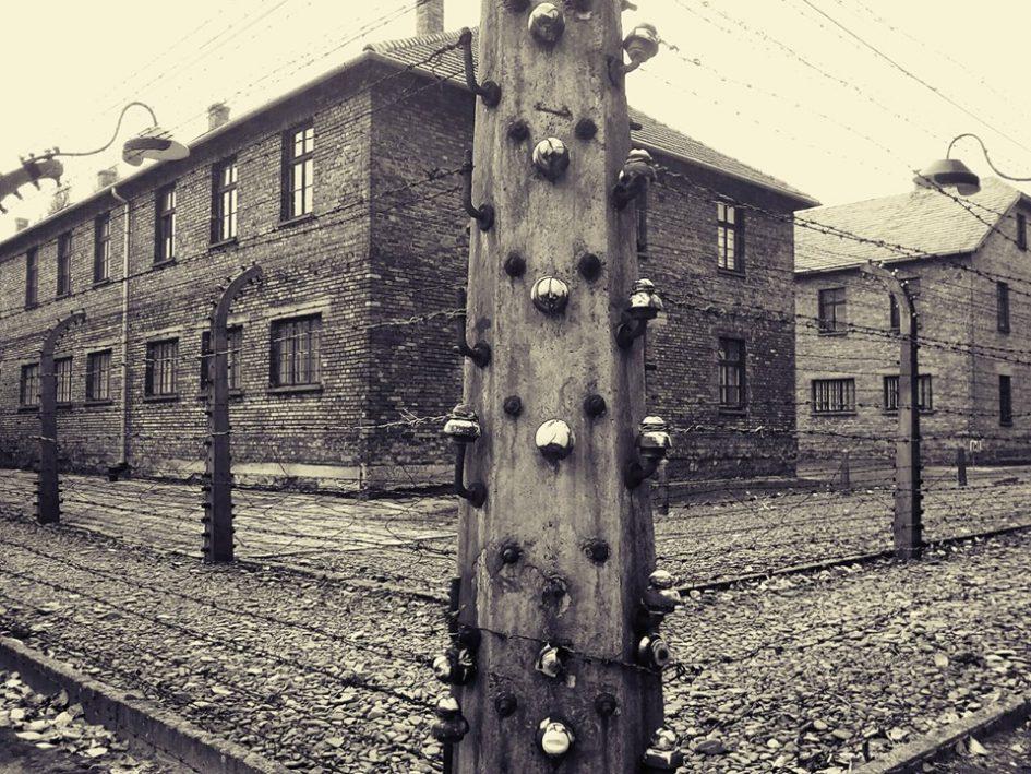 NOVELLA – Varsó, Auschwitz, Veszprém